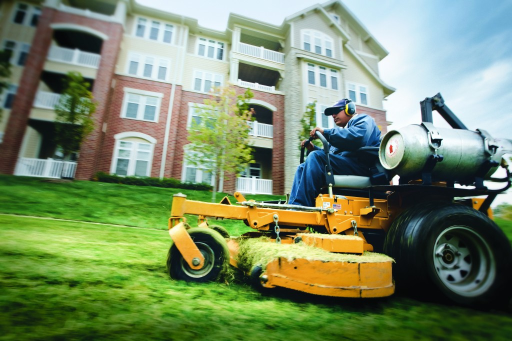 DTGG-Landscaping-Tampa.jpg